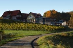 Weingut Buschenschank Steiner vlg. Jahrbacher