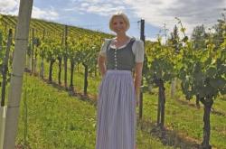 Weingut & Rebschule Assigal