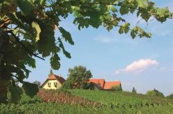 Weinbau Johann & Regina Dietrich